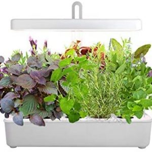 led hydroponic grow system kit indoor herb garden 10 pod growled hydroponics